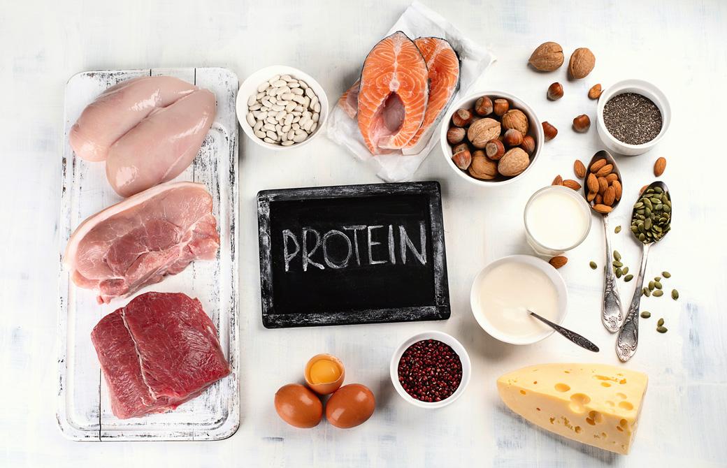 protein_1178331505